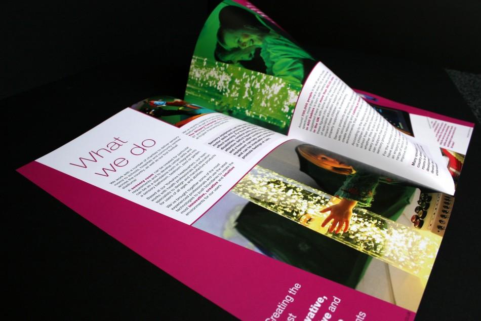 Graphic & Website Design & Marketing for Experia