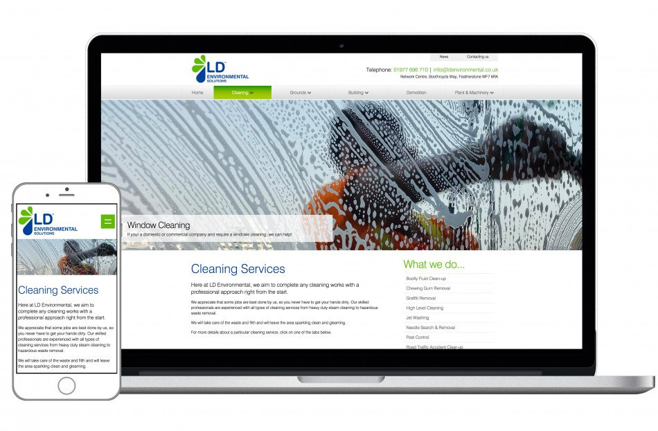 Graphic & Website Design & Marketing for LD Environmental Services