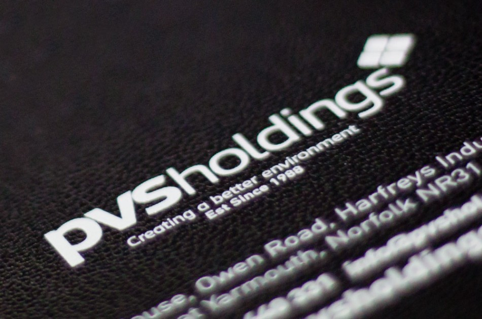 Graphic Design, Website Design & Marketing for PVS Holdings
